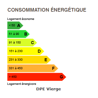 diagnostic de performance énergétique du chalet 6159 MEGEVE