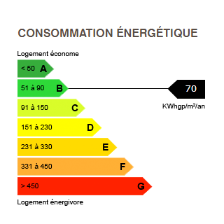 diagnostic de performance énergétique du chalet 6426 BOAN MEGEVE