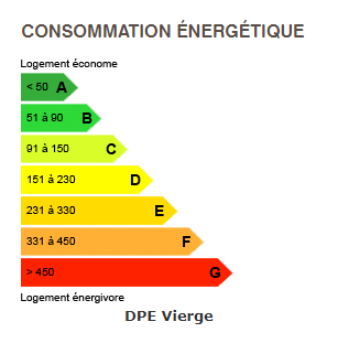 diagnostic de performance énergétique du chalet 6471 BOAN MEGEVE