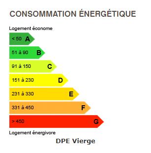 diagnostic de performance énergétique du chalet BOAN MEGEVE
